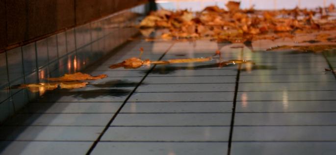 Fountain in fall