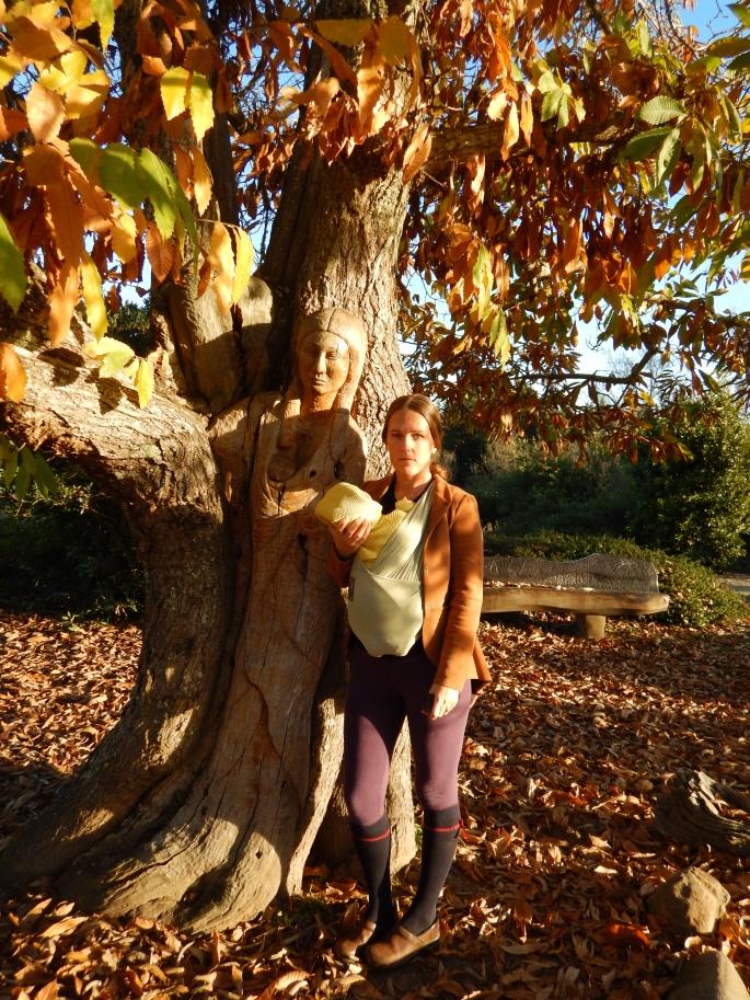 Amazing carved tree in Ragle Park, Sebastopol